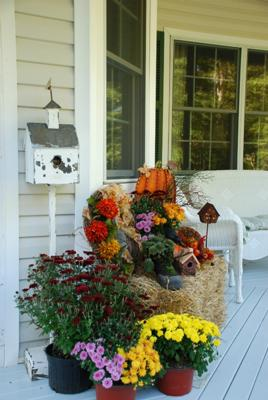 Welcome To The Porch!