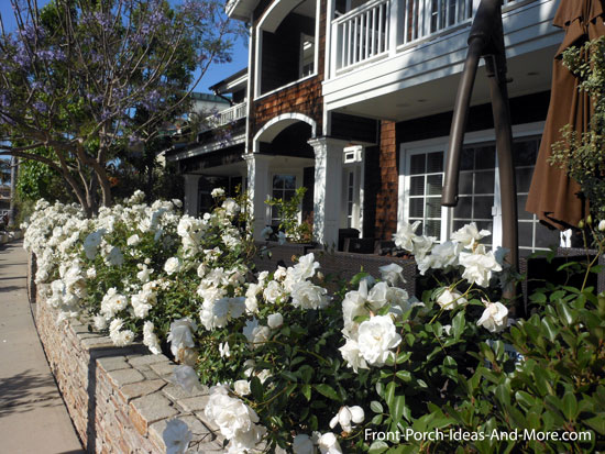 white roses in front of porch