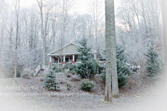 Anita Diaz beautiful NC mountain home