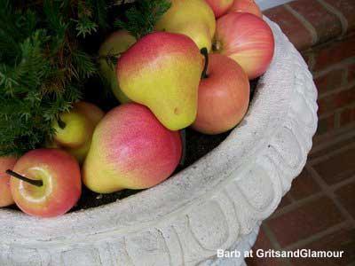 fresh apples in an evergreen in urn