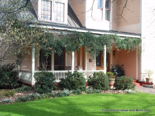 climbing plants on front porch for privacy