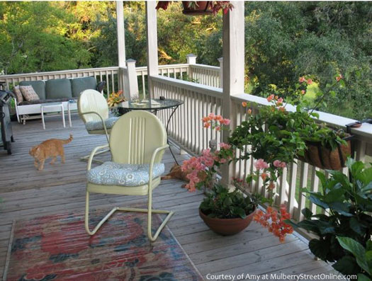 Serenity on Amy's back porch