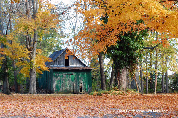 barn surrounded by fall foliage