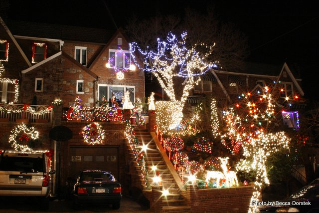 Red, blue,and white christmas lights in Brooklyn