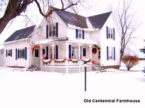 Joni's country farmhouse decorated for Christmas