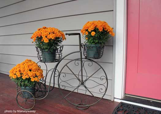 decorating ideas for fall - decorative planter with golden mums