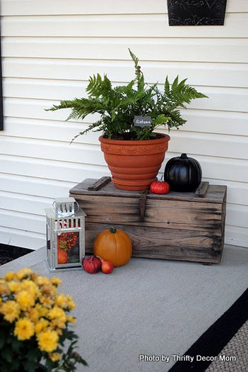 crates, pumpkins, and gourds on fall porch