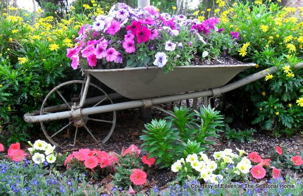 Eileen's neighbor plants flowers in an antique wheelbarrow.  Who wouldn't love that!