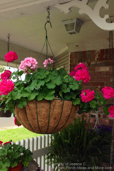 Gorgeous hanging baskets