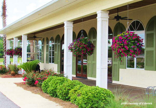 vibrant hanging baskets across front porch