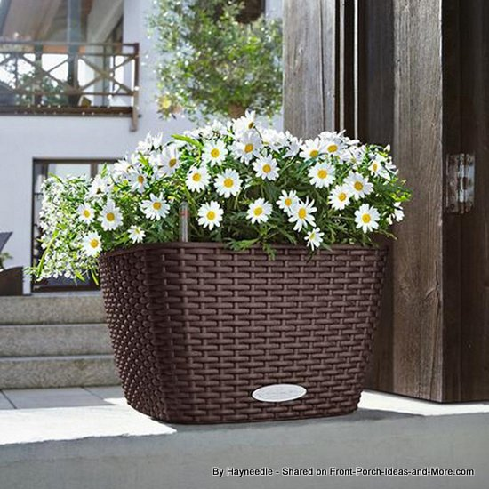 Cottage style resin planter filled with daisies - medium sized