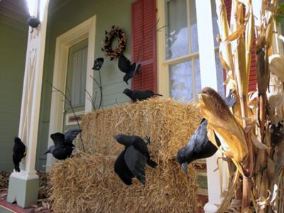 Halloween crows on bales of straw