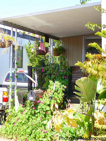 mobile home porch with lots of foliage and hanging baskets