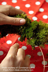 attaching moss to frame