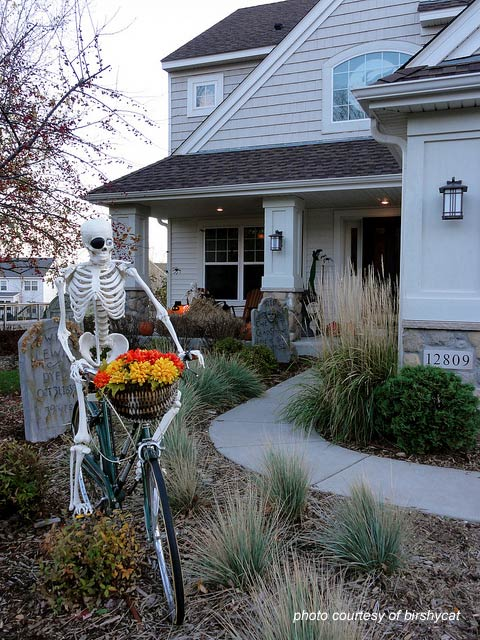 skeleton on bicycle for halloween