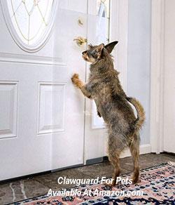 pet clawguard to protect doors