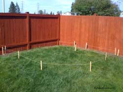 garden plot laid out on ground