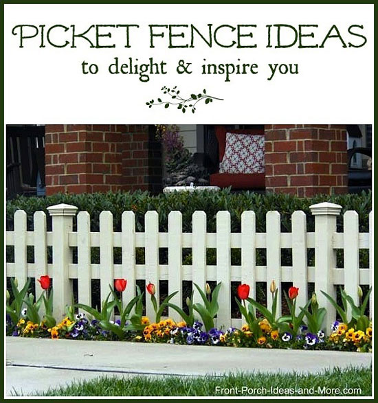 picket fence bordered by colorful tulips