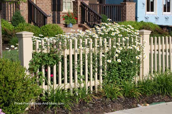 picket fence surrounded by daisies