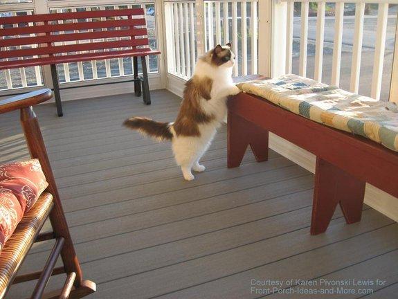 Karen's ragdoll cat, Chinda, loves her porch