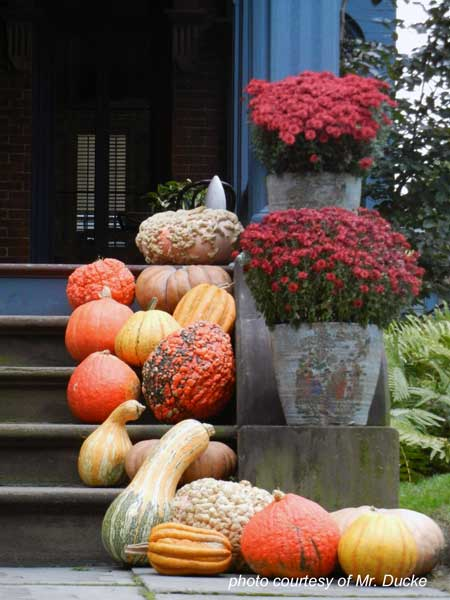 front porch steps decorated with pumpkins