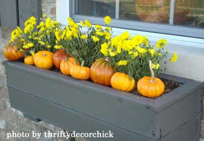 window box with flowers and small pumpkins