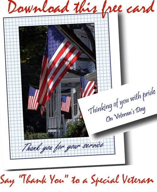 American flags flying from iconic front porches