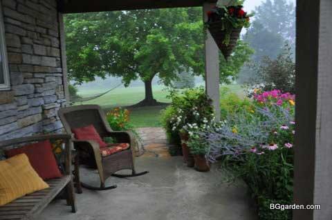 Beautiful zone 5 perennials during summer rain