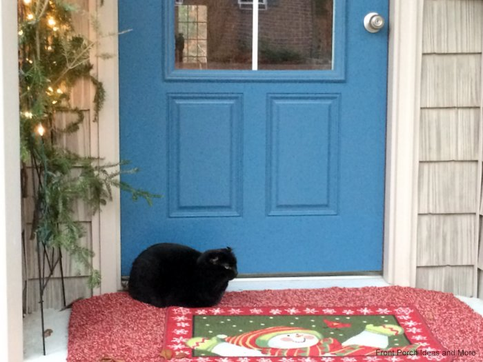Our neighbors cat, India, likes to relax on our Christmas porch