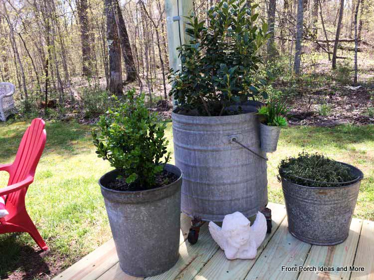 Groupings of plants in galvanized buckets in a corner of the deck
