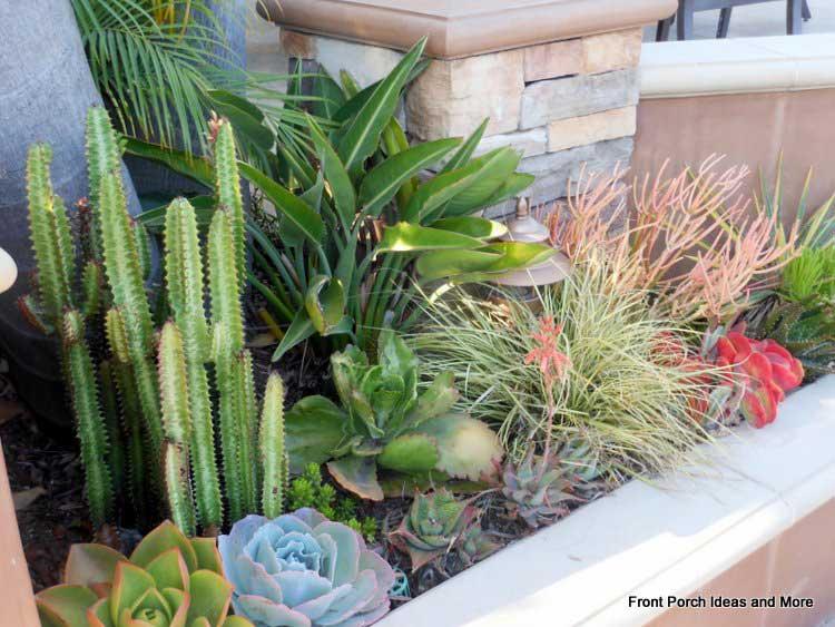 Colorful succulents surroud a porch