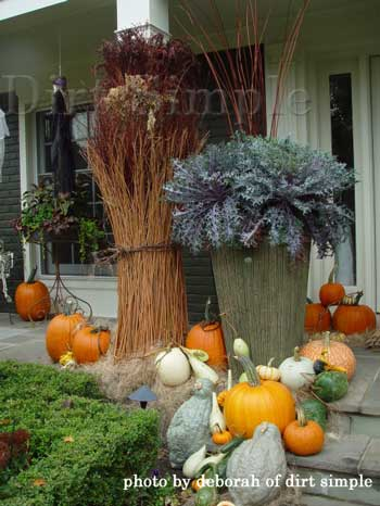 Gourds and spider webs