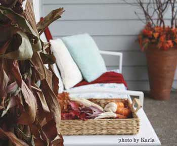 Fall decorations for color