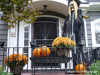 Outdoor Fall Decorating further Cortinasypersianasmedellin blogspot besides Three Season Porch further Outdoor Halloween Decorations additionally Art Nouveau Teal French Lily. on curtains and blinds designs