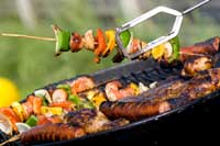 Grilled shish-kebobs