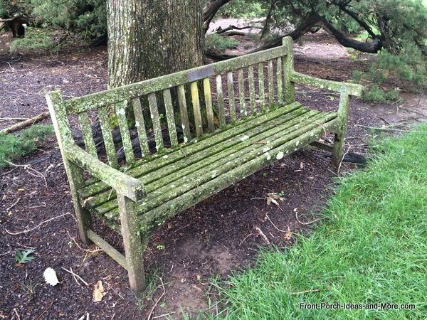 weathered wooden garden bench beneath large tree