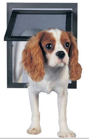 pet-safe screen doors