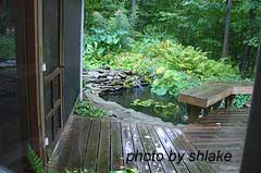 Water garden beside porch