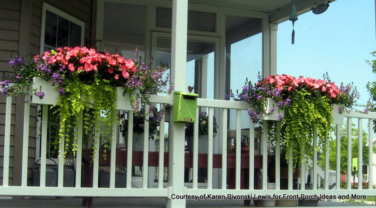 Karen's window box planters full of vibrant summer flowers