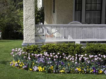 Natural landscape skirting