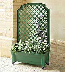 privacy trellis ideas
