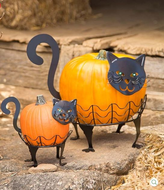 Pumpkin holders for Halloween turn two pumpkins into two black cats.  Simply adorable!
