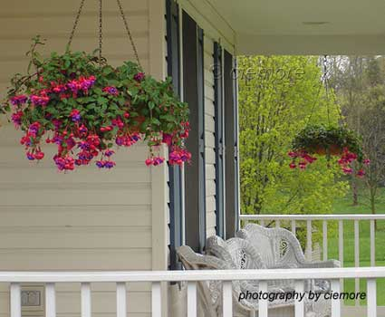 beautiful hanging baskets on front porch