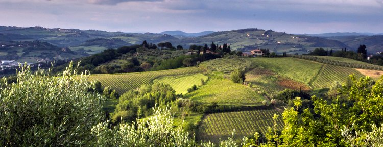 Beautiful scene from Tuscany
