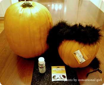 Pumpkin black cat materials