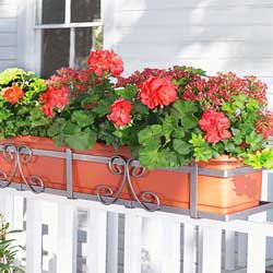 Self Watering Planter Strawberry Planters Upside Down