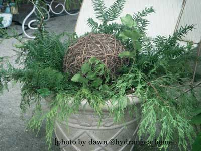 Planter with holiday greenery