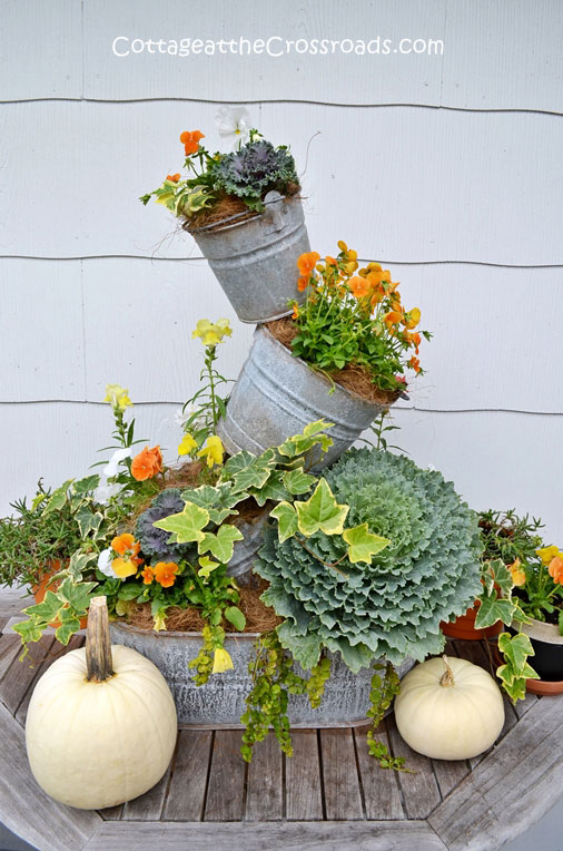 topsy turvy planter with kale