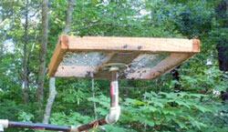 flat bird feeder assembly
