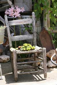 old chair with yellow flowers
